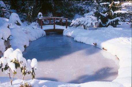 Den gartenteich im winter pflegen s ll gmbh for Gartenteich im winter