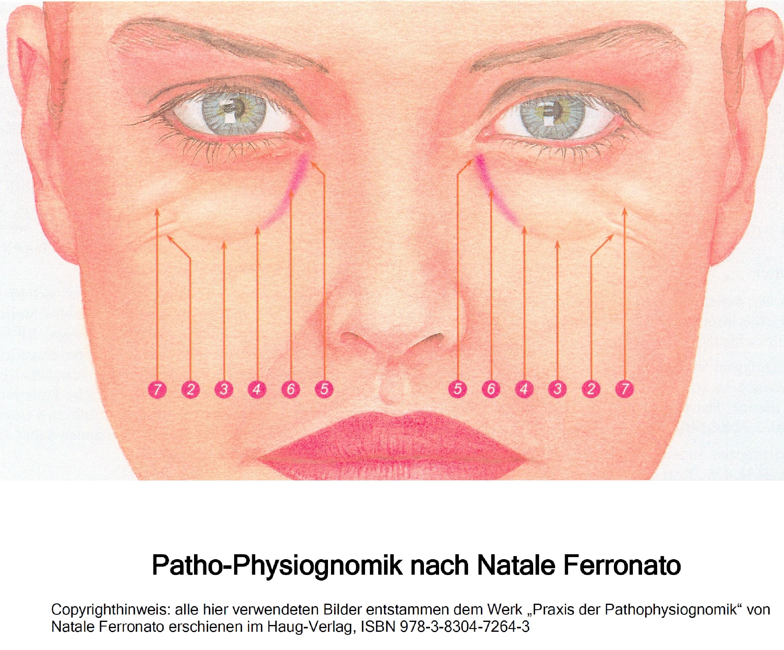 Gesichtsmerkmale physiognomie 9783035000474