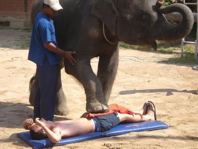 Elefanten-Massage / Bild: HolidayCheck.de