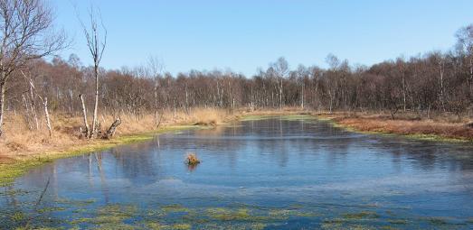 Ahrensfelder Moor LK Osterholz