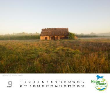 Naturschätze 2020 - Monat September - Foto: Naturschutzinitiative e.V. (NI)