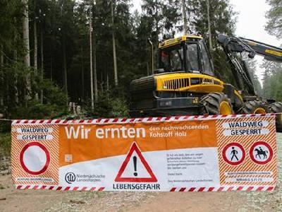 Landesforsten sanieren Wälder um Braunlage