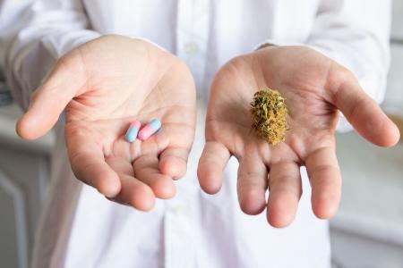Softes Cannabis / Foto: Fotolia