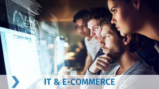 IT und E-Commerce