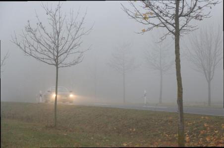Nebelscheinwerfer und -schlussleuchten müssen bei Nebel richtig eingesetzt werden / Foto: ARCD