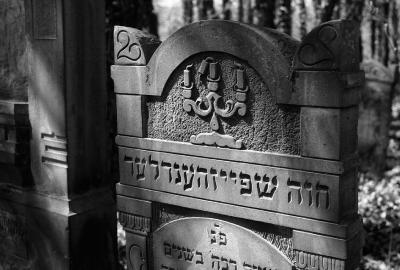 """""""Haus der Ewigkeit. Spurensuche – Jüdische Friedhöfe im mitteleuropäischen Kulturraum 2004 – 2018"""" vom 7. November 2018 bis zum 10. März 2019"""