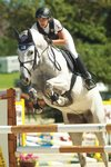 Festtage des Reitsports am Attersee - Tag 2