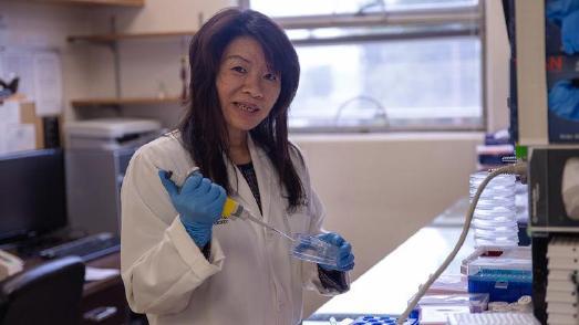 Prof. Dr. Hongyu Qiu, Loma Linda University / © Foto: Loma Linda University Health
