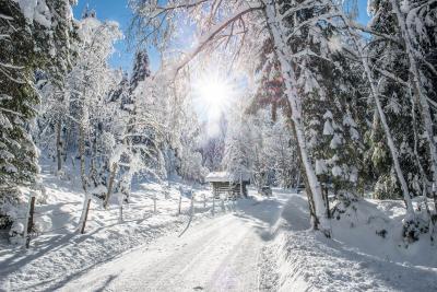Wintertraum Wildschönau