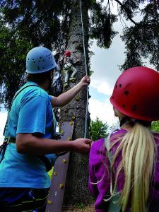 Klettern unter professioneller Anleitung