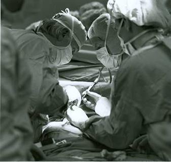 Dr. Leonard Bailey und Team bei der Kinderherztransplantation von Baby Fae am Loma Linda University Medical Center 1984 © Foto: Loma Linda University Health