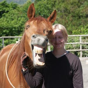 Lachendes Pferd&Ruth
