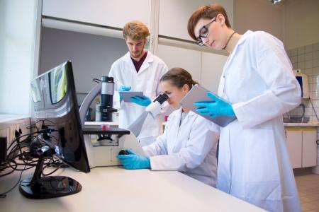 Neues Fernstudienangebot: Medizinische Biotechnologie (B. Sc.) / Bildnachweis: TH Bingen / Christine Böser