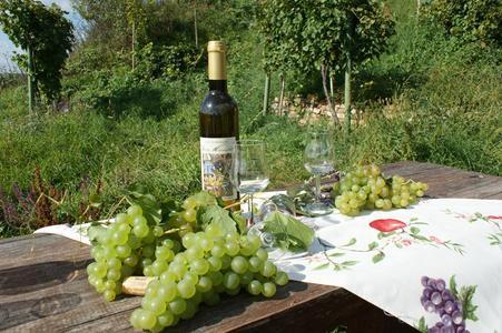 Händel Wein auf dem Händel Weinberg in Zappendorf (c) Stadtmarketing Halle (Saale) GmbH