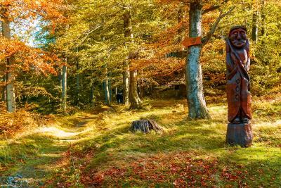 Wöchentlichen KTW-Wanderungen im Oktober und November