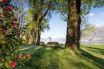 Am Ufer des Lago Maggiore – von Tenero zum Kamelienpark nach Locarno