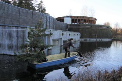 Weihnachtsbaum an Bord: Wildpark-Mitarbeiter Kay Östreich und Josefine Vater versenken die Tanne im Naturaquarium (Foto: Wildpark-MV)