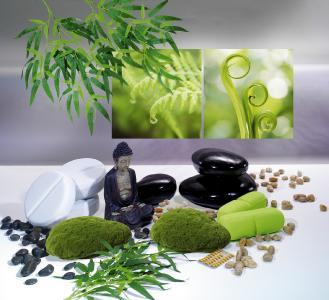 dekorativ entspannende wellness oasen heinrich woerner. Black Bedroom Furniture Sets. Home Design Ideas