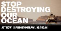 Hört auf, unseren Ozean zu zerstören: Aktion gegen das Fischen mit Grundschleppnetzen in EU-Meeresschutzgebieten