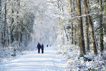 Das Winterwetter lockt viele Besucher in den Wald. Die Landesforsten bitten darum, aus Rücksicht auf die Wildtiere die Wege nicht zu verlassen. Bild: Niedersächsische Landesforsten