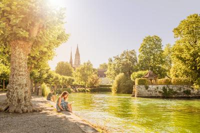 Stadtgarten / Bild: MTK-Dagmar Schwelle