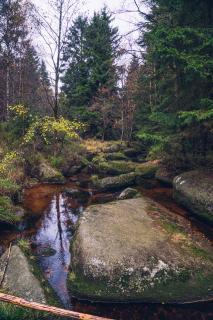 Wandern im Herbst / Foto: Stadtmarketing Bad Harzburg, Best Mountain Artists