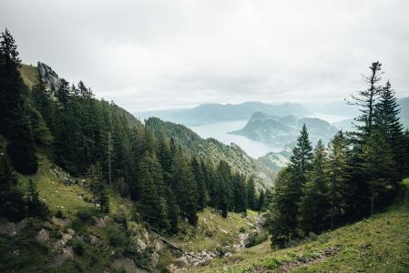 Blick aus der Zahnradbahn oberhalb Aemsigen am Pilatus_Fotograf_Twintheworld.ch