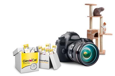 Fotoaktion Preise