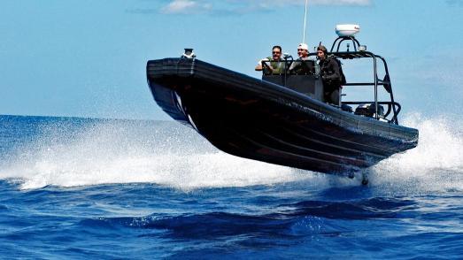 RIB Tours: Todesgefahr für Ostsee-Schweinswale. Foto: pixabay