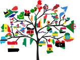 Treedom weltweit