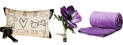 SANDINI Auswahl violett