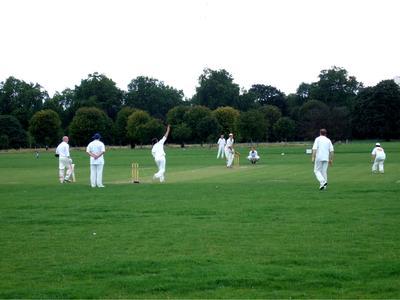 Cricket - idealer Sommersport