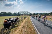Ultimatives Sommerangebot für Fans: Mit Ex-Profis die Strecke der Deutschland Tour 2021 abfahren / Bild: ©MarcelHilger