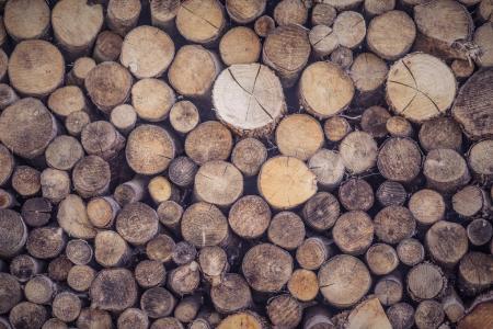 Holzstämme gestapelt
