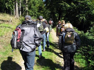 Gemeinsame Herausforderungen meistern beim Team-Coaching in der Natur