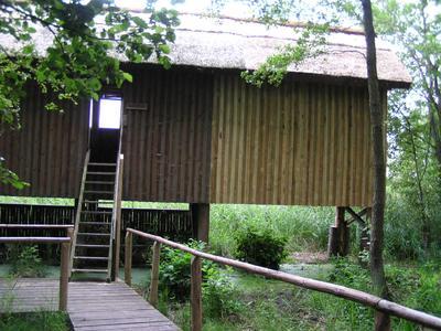 Beobachtungsstand am Rederangsee im Müritz-Nationalpark