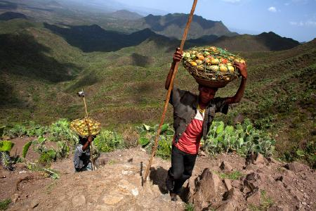 Das Gewinnergesetz aus der äthiopischen Tigray Region: Conservation-Based Agricultural Development-Led Industrialization (1994), supported by Mass Mobilization Campaigns (1991)  and the Youth Responsive Land Policy (2008), Foto: TerrAfrica Partnership at NEPAD Agency