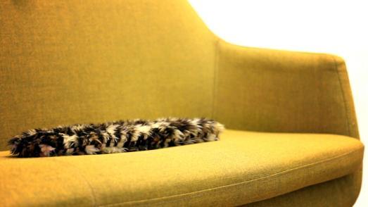flatcat Hauptproduktbild- flatcat liegt flach auf dem Sofa.