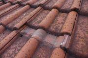 """Bei der Dachbeschichtung werden die überdeckten Bereiche nicht gereinigt – sondern der Schmutz wird """"versiegelt""""."""