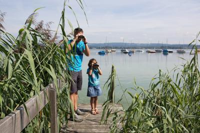 Natur erfahren: Bei Vogelexkursionen mit dem Fernglas gehen kleine und große Gäste auf Tuchfühlung mit der Tierwelt am Untersee / Bildnachweis: REGIO Konstanz-Bodensee-Hegau e.V.