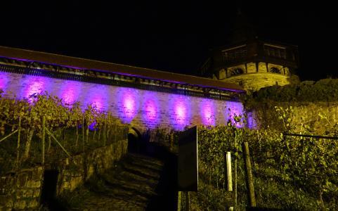 Burg in Violett