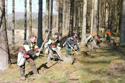 Ein 200 Hektar großes Waldgebiet zwischen der Eckertalsperre und der B4 muss neu bewaldet werden. Pausenlos sind Forstwirte noch bis nach Ostern mit den Pflanzarbeiten beschäftigt
