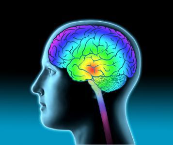Schlaganfall-Spezial: Aufklärung ist Trumpf, denn Zeit ist Hirn