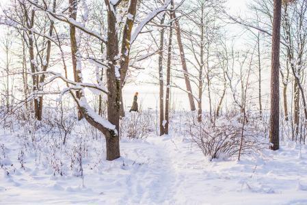 Winterlandschaft Tallinn, Estland