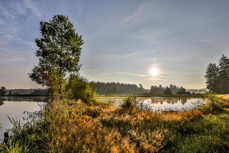 Wandern in den Goldenen Herbst: Ideal für unbeschwerte Wandertouren durch golden leuchtende Auwälder: der Oberpfälzer Wald mit seinen weitläufigen Teichlandschaften und idyllischen Flusstälern, wie hier entlang der Trausnitz im Pfreimdtal oder…