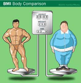 Gesunde Ernährungskonzepte - Lösung für Übergewichtige