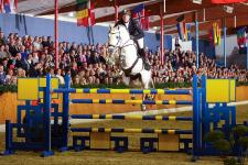 Best atmosphere and outstanding jumping and dressage sires at Sosath's stallion show