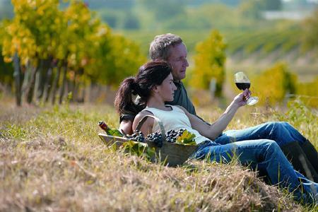 In der Kap-Region kann man köstliche Spitzenweine vor eindrucksvoller Kulisse genießen.