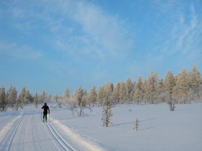 Cross_Country_Skiing_in_Hetta_Pasi_Ikonen.jpg