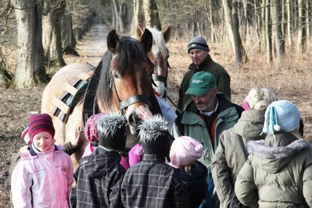 Premiere: Wanderung mit Elbingeröder Hortkindern, Foto: Martin Bollmann, Nationalpark Harz